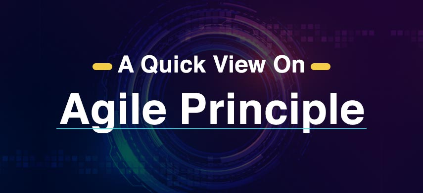 A Quick View On Agile Principle