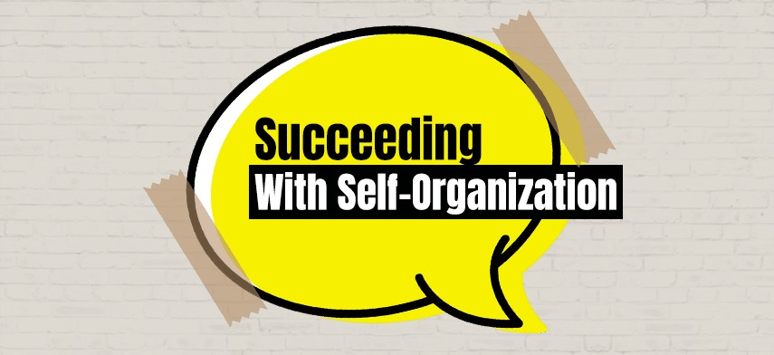 Succeeding with Self-organization